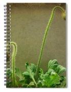 Buds Spiral Notebook
