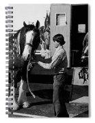 Budweiser Clydesdales Los Vaqueros Rodeo Parade Tucson Arizona 1984 Spiral Notebook