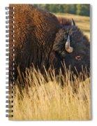 Buff Spiral Notebook