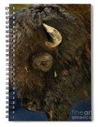 Buffalo   #5601 Spiral Notebook
