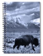 Buffalo And Mountain In Jackson Hole Spiral Notebook