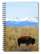 Buffalo And The Rocky Mountains Spiral Notebook