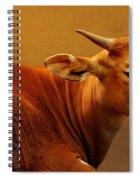 Buffalo Spiral Notebook