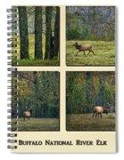 Buffalo National River Elk Spiral Notebook