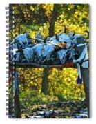 Buffalo Spiritual Grounds Spiral Notebook