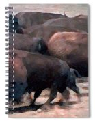 Buffalo Stampede Spiral Notebook