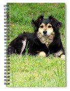 Buffy/faithful Companion Spiral Notebook