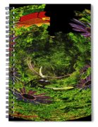 Bugs At The Zoo Daisies And Dragonfly Spiral Notebook