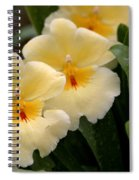 Build Me Up Buttercup Spiral Notebook