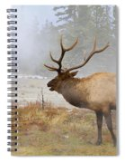 Bull Elk Bugles Loves In The Air Spiral Notebook