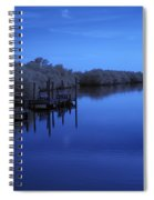 Bull Frog Creek II Gibsonton Fl Usa Near Infrared Spiral Notebook