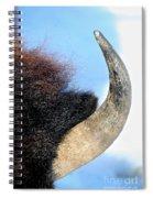 Bull Horn Spiral Notebook