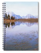 Bull Moose Grand Teton National Park Wy Spiral Notebook
