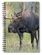Bull Moose IIIIi Spiral Notebook