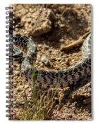 Bull Snake Spiral Notebook