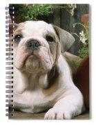 Bulldog Puppy With Flowerpots Spiral Notebook