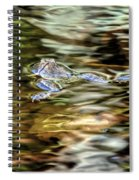 Bullfrog In Colorful Pond Spiral Notebook