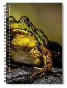 Bullfrog Watching Spiral Notebook