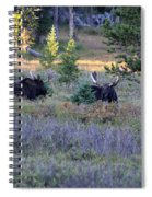 Bulls In The Meadow Spiral Notebook