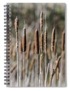 Bulrushes Spiral Notebook