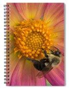 Bumble Bee Dahlia Spiral Notebook