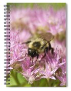 Bumble Bee On A Century Plant Spiral Notebook