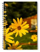 Bumble Bee On A Western Sunflower Spiral Notebook
