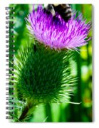Bumble Bee On Bull Thistle Plant  Spiral Notebook