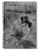 Bumble Bee Post Card 2 Bw Spiral Notebook