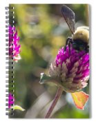 Bumble Bee  Spiral Notebook