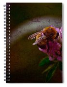 Bumble Bee Tattered Wings Art 3 Spiral Notebook