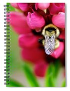 Bumble Snuggle Spiral Notebook