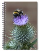Bumble Thistle Spiral Notebook