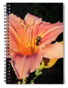Bumblebee On Daylily Spiral Notebook