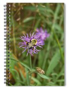 Bumblebee On Flower Spiral Notebook