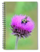 Bumblebee On Thistle 2013 Spiral Notebook