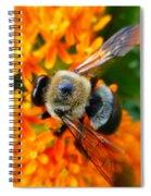 Bumbler Spiral Notebook