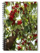 Bumper Crop - Cherries Spiral Notebook