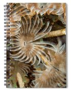 Bunch Of Dusters Spiral Notebook