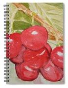 Bunch Of Red Cherries Spiral Notebook