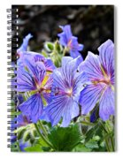 Bunches Spiral Notebook