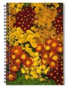 Bunches Of Yellow Copper Orange Red Maroon - Hot Autumn Abundance Spiral Notebook