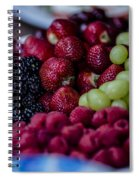 Bundle Ole Fruit Spiral Notebook
