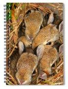 Bunny Babies Spiral Notebook