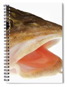 Burbot Lota Lota Head Isolated On White Spiral Notebook