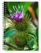 Burdock Spiral Notebook