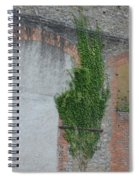 Window With Ivy Spiral Notebook