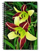 Burgundy And Yellow Lilies 2 Spiral Notebook