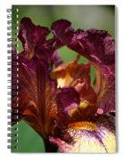 Burgundy Blossom Spiral Notebook