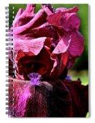 Burgundy Breeze Spiral Notebook